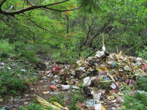 Trash dumped in Balinese forest, a condition Yuyun made her mission to avert.