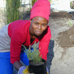 Grootbos Foundation_florence-and-a-plant