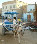 Siwa Sustainable Dev Initiative_1111886036_boys_in_cart