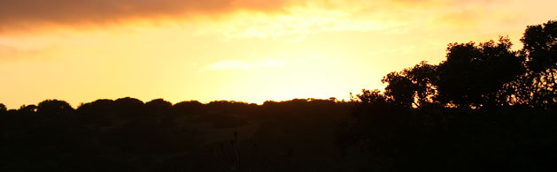 Baobab Travel-RESPONSIBLE TRAVEL-south_africa5 SUNSET