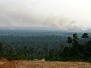 Indonesia, forest destruction and fires in the distance. Photo: flickr member Billy