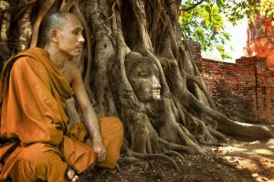 Banyan Tree-overtaking Buddha head statue at Angkor Wat-Cambodia 2